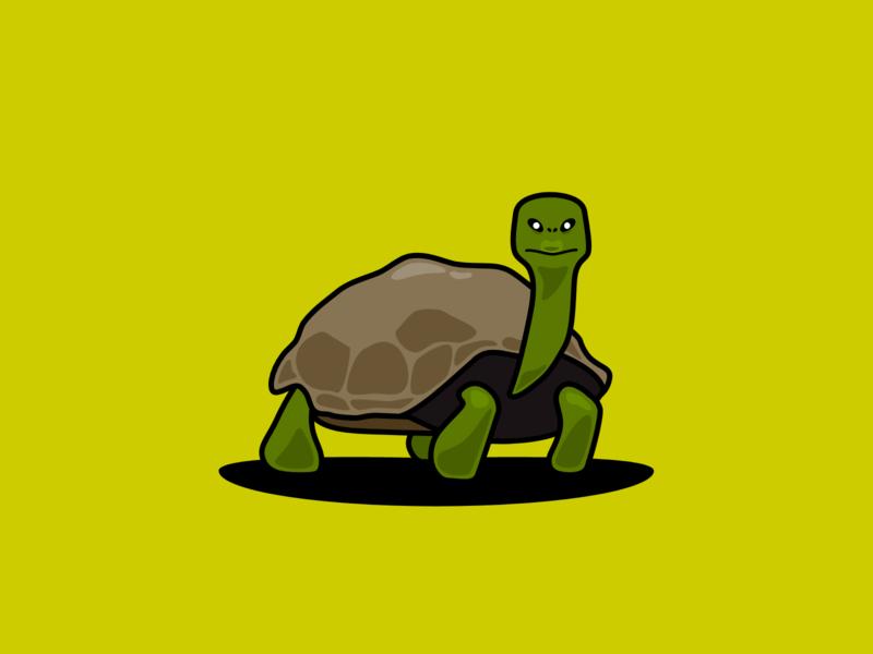 Tortoise animal ancient tortoise flat illustration design inktober2019 inktober