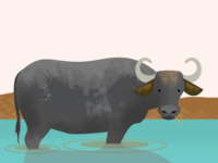 Buffalo illustration