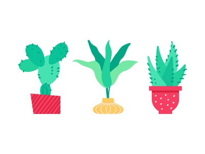 Potted Plants Bundle green succulent cacti plant potted plant flat design style vector illustration design
