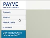 Payve Homepage
