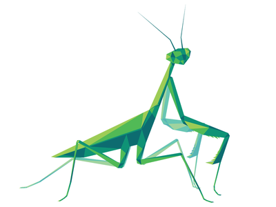 Poly Mantis poly mantis bug insect bright illustrator vector