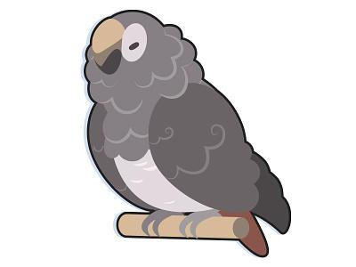 Timneh Doodle timneh parrot cartoon cute illustrator simple flat bird grumpy african grey