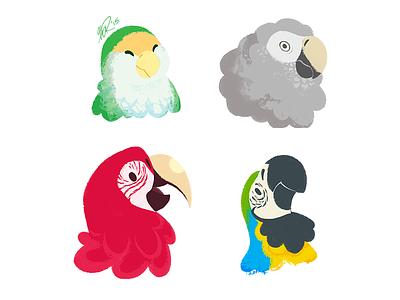 Cute Bird, Grump Bird, Red Bird, Blue Bird macaw parrot lovebird grey african bird