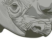 Rhinovector