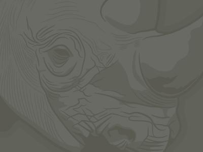 Rhino: low contrast rhinoceros vector illustrator illustration low contrast