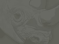 Rhino: low contrast