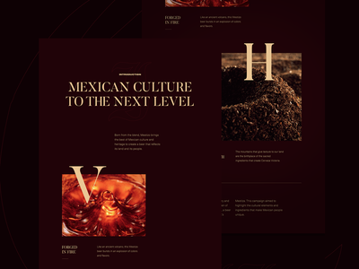 Mestizo – Behance Case Study mexican art film traditional webdesign web design micro interaction case studies casestudy case study behance project beer typography landing page microinteraction web website design website ux uidesign ui