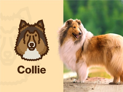 Collie Dog Logo vector face dog illustration flat dog icon dog art collie simple fluffy animal dog logo