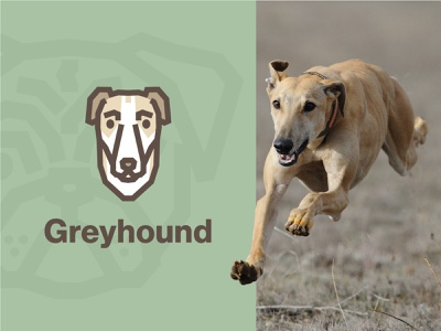 Greyhound Dog Logo symbol fido puppy breeds dog illustration pet cute face logo animal simple illustration dog