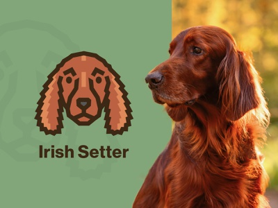 Irish Setter Dog Logo canine long hair vector