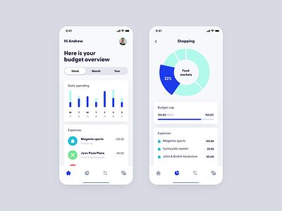 Wallny - Dashboard app concept budget ui interface financial finance design dashboard clean app