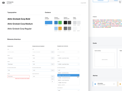 UI Styleguide fonts colors dropdowns forms buttons source project startup styleguides ui