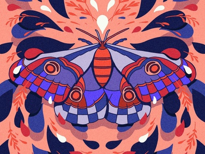 Moth Symmetry sketch sketchbook doodle symmetry graphic design graphicdesign illustrator hand drawn draw procreate butterfly moth drawing art vector graphic design illustration