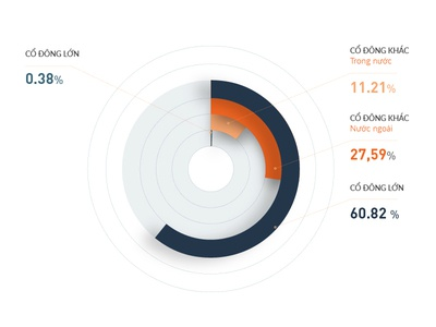 Infographic - Pie chart visualization