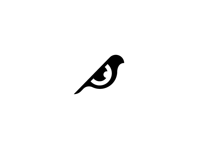 Bird + Eye illustration minimal brand identity icon logomark symbol logo animal bird eye
