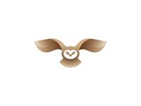 Owl_Experiment