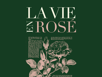 La Vie En Rose french flower rose photoshop illustration invitation