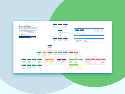 Information Architecture - My Biogen branding ui ux design webdesign ux design
