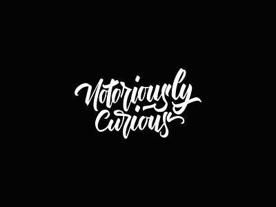 Brush Lettering for Book Title brush calligraphy lettering book novel titling title brand branding identity logo