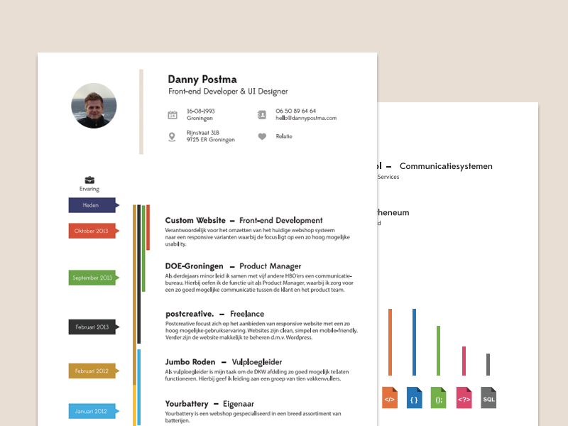 Resume resume cv print color icons skills clean experience