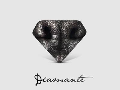 Diamond Dog | Mark & Logotype diamond logo logotype type typo mark marchio symbol concept