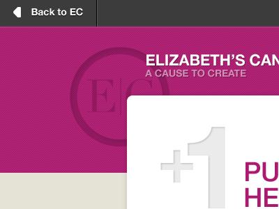 EC +1 Campaign Site