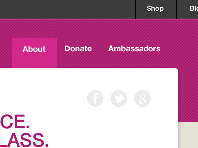EC +1 Campaign Site pt. 2 web design