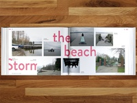 Storm the beach