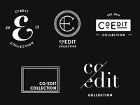 Logo Concepts for Photography Print Site