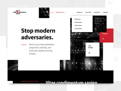 Red Canary website, UI design