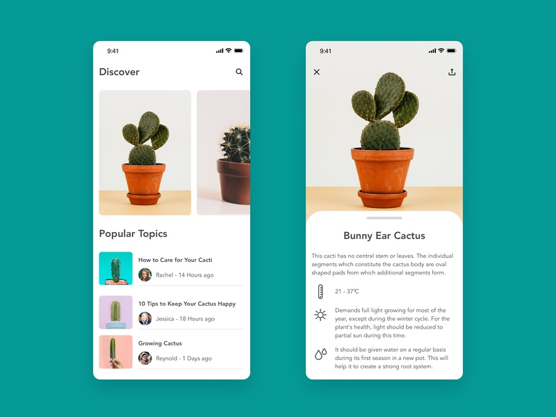 Cactus Pocket Book plant pocket book cactus user experience user interface product design ios mobile app design ux ui