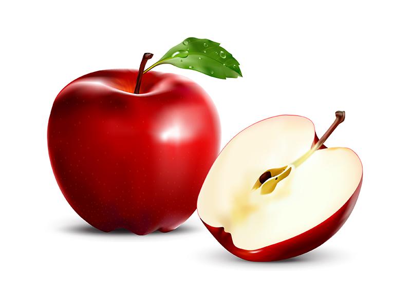 red apple  vector  by media jamshidi