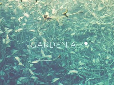 Gardenia Dot