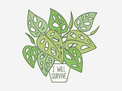 I Will Survive   Monstera Adansonii print design print stickermule houseplant swiss cheese adansonii monstera plant caseyillustrates vector orlando