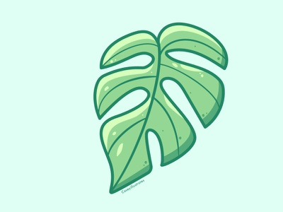 Rhaphidophora Tetrasperma rhaphidophora tetrasperma leaf monstera house plants house plant caseyillustrates vector illustration orlando