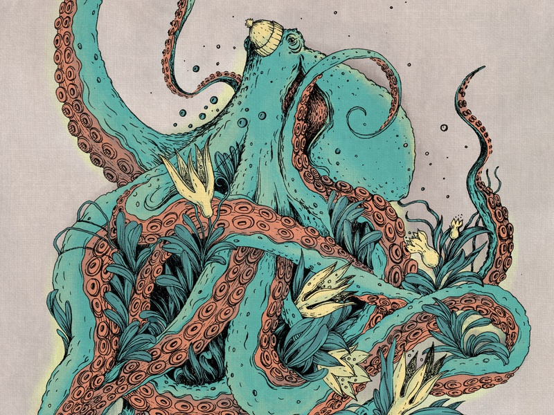 Beanie Octopus