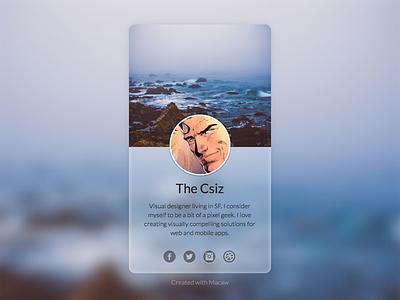 The Csiz Profile macaw profile thecsiz design html css