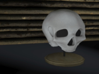 Cinema 4D display skull