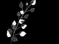 Floral Doodles, A Series