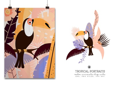 Tucan tropical portrait illustrations for kids animals vectorart