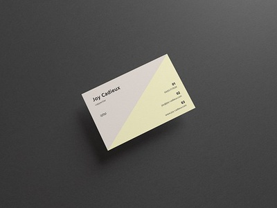 Free Modern Stylish Business Card Mockup modern stylish business card stylish business card business card mockup