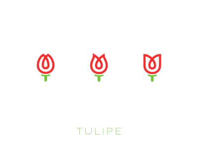 Tulipe 1  logo flower tulips tulip red green