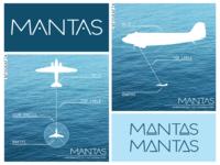 Projekt MANTAS