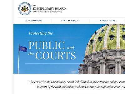 Disciplinary Board Website typography web design web