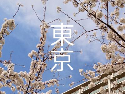 Tokyo! tokyo sakura cherry blossom spring flower sky building blue kanji 東京