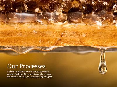 Solleone Bio italian italy food organic honey type typography gold