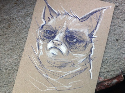 I drew Grumpy Cat... grumpy cat drawing sketch bic pen charcoal