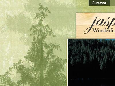 Jasper v1.3 summer light2