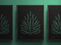 Agave Tequilana Print