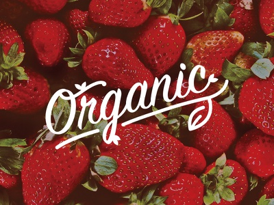 Organic Type fresh strawberry organic fruit signpainter type